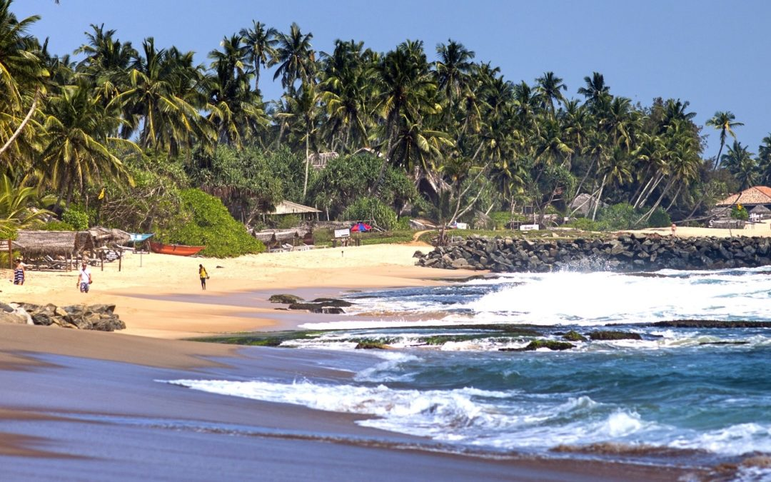 20 Amazing Things To Do in Goa – The City of Beaches