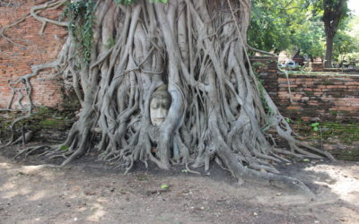 Top Three Attractions of Ayutthaya, Bangkok