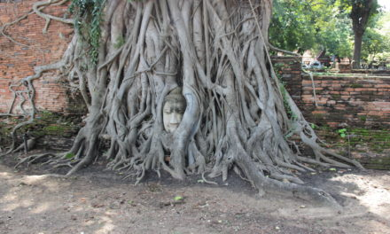 Top Three Attractions of Ayutthaya